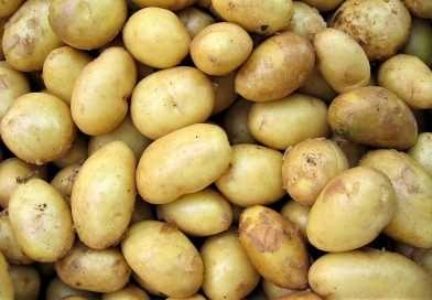 Ukrayna patates ithalatında rekor kırdı. Ancak fiyatlar Polonya'dan daha yüksek