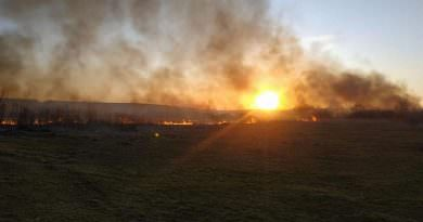 Ukrayna'da yılbaşından bu yana çıkan yangınlarda 928 kişi öldü