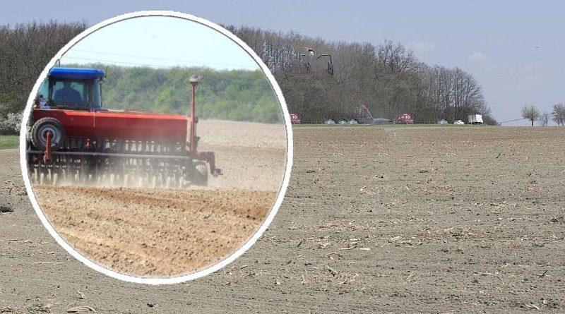 Ukrayna'daki çiftçilerin kuraklıktan kayıpları 6.5 milyar UAH olarak tahmin ediliyor