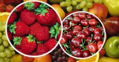 kiraz ve çilek yaz meyveleri
