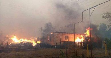 Lugansk bölgesindeki yangınlarda 11 yerleşim yeri ateş çemberinde (video)